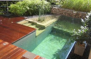 piscina natural 2